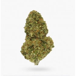 buy-cotton-candy-kush-aaaa-cannabis-online-600x611